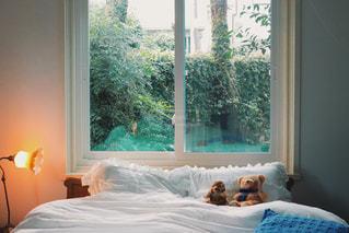 寝室、くまと一緒にの写真・画像素材[987033]