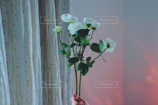 花束をの写真・画像素材[987034]