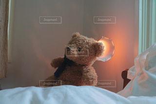 クマはカワイイの写真・画像素材[987040]