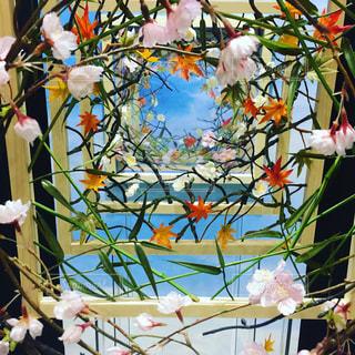 木の枝に花の花瓶 - No.901880