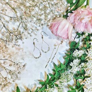 花の写真・画像素材[375957]