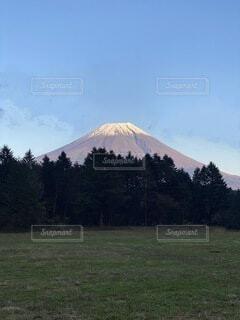 ふもとっぱらから見る富士山の写真・画像素材[4023734]