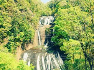滝の写真・画像素材[470428]