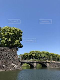水の体の上の橋の写真・画像素材[1176583]