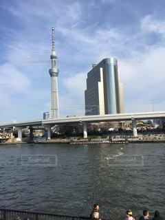 東京の写真・画像素材[470718]