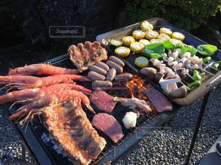 肉の写真・画像素材[471739]