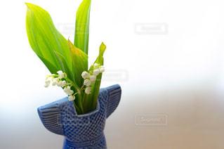 黄色い花の上に座っての花で一杯の花瓶の写真・画像素材[1153815]