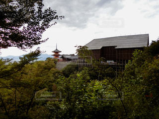 清水の舞台 2017年8月の写真・画像素材[907302]