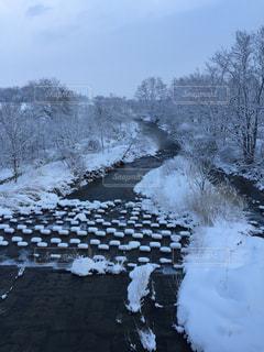 雪の写真・画像素材[472089]