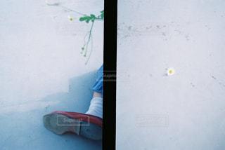 フィルムカメラの写真・画像素材[697663]