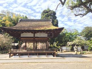 京都 - No.475269