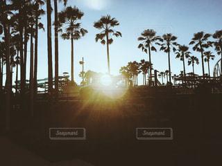 長島と夕陽の写真・画像素材[555585]