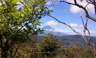 富士山の写真・画像素材[472841]