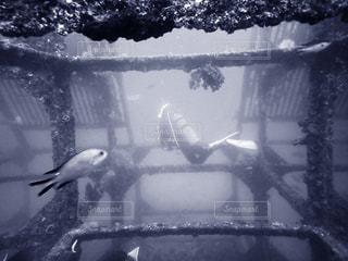 漁礁にするために沈められた構造体の写真・画像素材[870665]