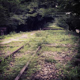 線路の写真・画像素材[473420]