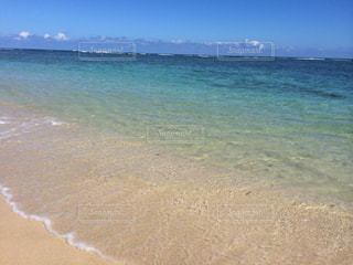 ハワイのハレイワビーチの写真・画像素材[875615]