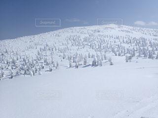 雪 - No.474319