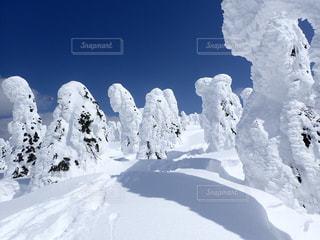 No.474323 雪