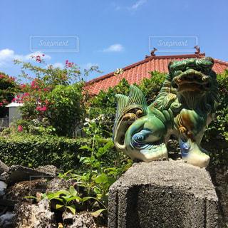 沖縄 - No.474157