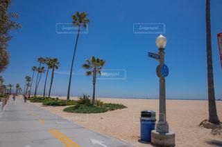 海辺のサイクリングロードの写真・画像素材[1192721]