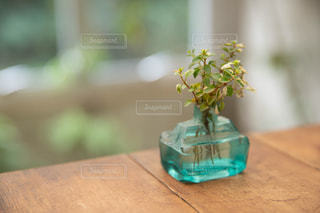 木製テーブルの上に座っている花の花瓶の写真・画像素材[1803089]