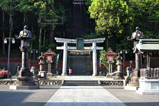 神社の写真・画像素材[503937]