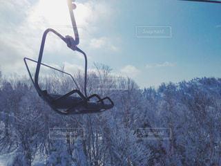 雪の写真・画像素材[474746]