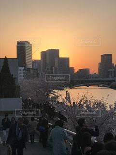 春の写真・画像素材[500632]