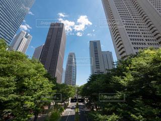 東京・新宿副都心(西新宿)の超高層ビル群の写真・画像素材[1193883]