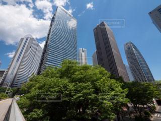 東京・新宿副都心(西新宿)の超高層ビル群の写真・画像素材[1193884]