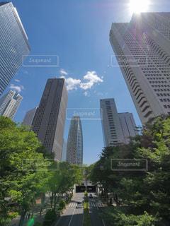 東京・新宿副都心(西新宿)の超高層ビル群の写真・画像素材[1193885]