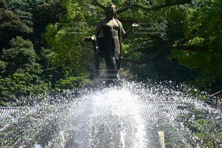 水の象に乗って男の写真・画像素材[759868]