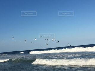 ビーチの写真・画像素材[484783]