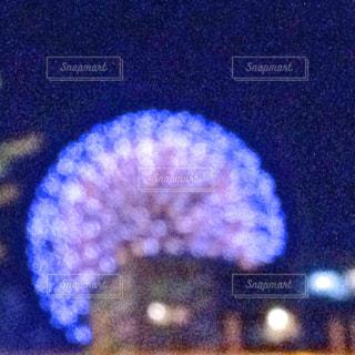 近くに珊瑚のアップの写真・画像素材[1361316]
