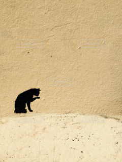 壁に描かれた黒ネコの絵の写真・画像素材[534944]