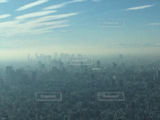 東京タワーの写真・画像素材[477624]