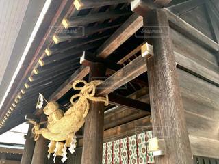北海道神宮の写真・画像素材[857384]