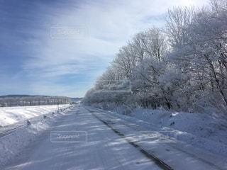 雪に覆われた道の写真・画像素材[947957]