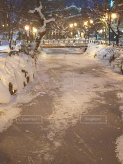 札幌市中央区の鴨々川の写真・画像素材[2929634]