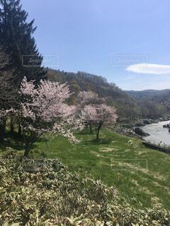 北海道旭川市神居古潭の写真・画像素材[3192867]