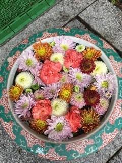 帯廣神社 花手水の写真・画像素材[3563093]