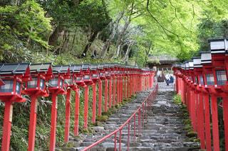 京都 - No.477851