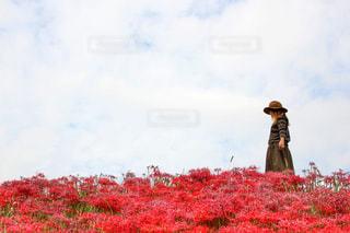 木の隣に立っている男の写真・画像素材[787624]