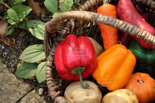 果物や野菜のボウル - No.817532
