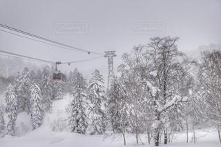 冬景色の写真・画像素材[970736]