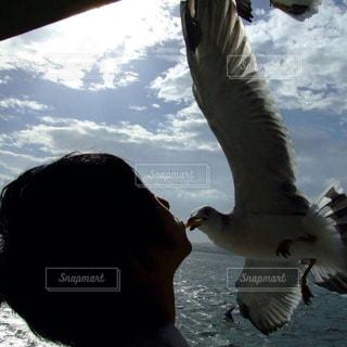 海の写真・画像素材[478547]