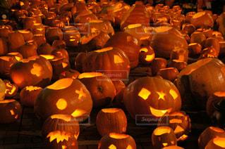 秋の写真・画像素材[528954]