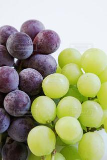 葡萄がいっぱい!の写真・画像素材[849656]