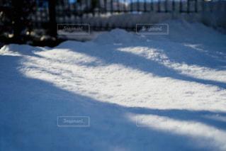 雪が降った翌日の朝の写真・画像素材[972632]