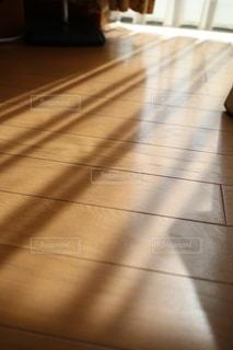 午後の柔らかな光の写真・画像素材[1124346]